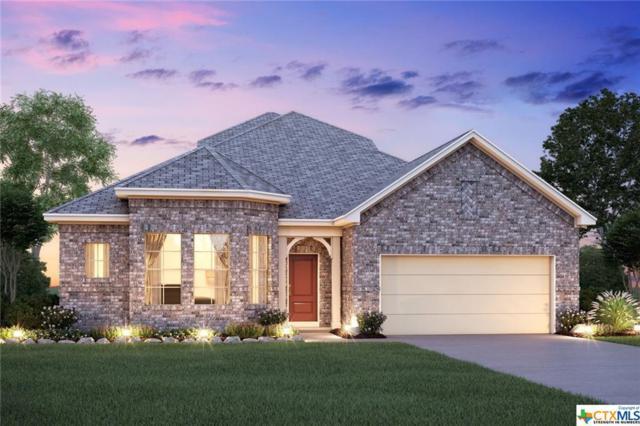 209 Asiago, Cibolo, TX 78108 (MLS #361207) :: The Suzanne Kuntz Real Estate Team