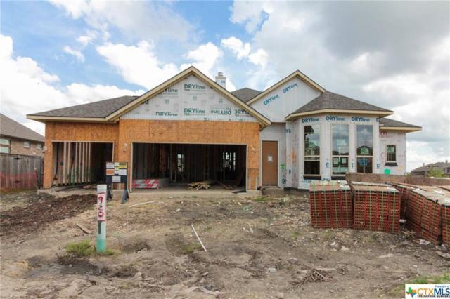 920 Sussex Cove, Cibolo, TX 78108 (MLS #361212) :: The Suzanne Kuntz Real Estate Team