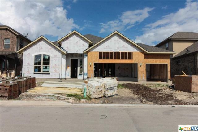 304 Kildare, Cibolo, TX 78108 (MLS #361214) :: The Suzanne Kuntz Real Estate Team