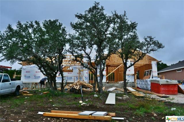 1403 Cottonwood Road, Fischer, TX 78623 (MLS #361221) :: The Suzanne Kuntz Real Estate Team