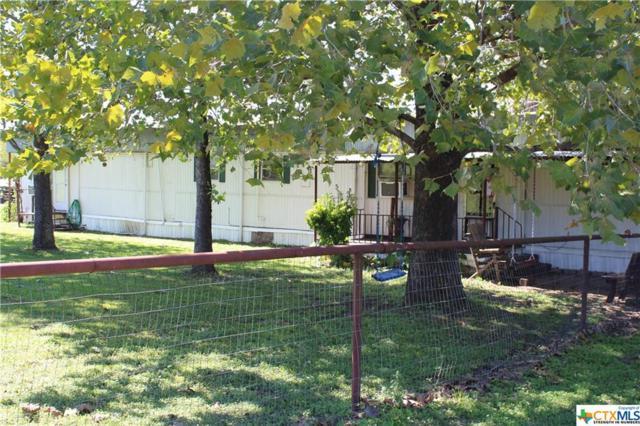 1381 San Marcos Hwy, Luling, TX 78648 (MLS #361259) :: Magnolia Realty