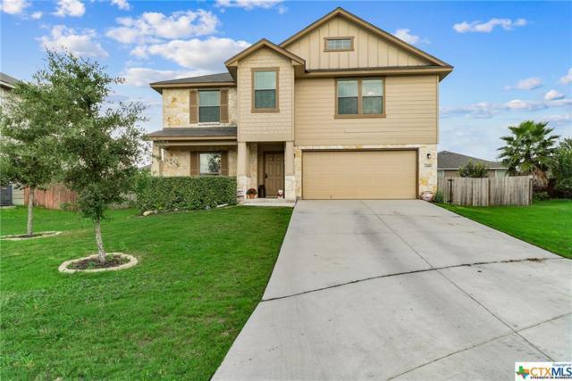 2448 Ibis Ave, New Braunfels, TX 78130 (MLS #361265) :: The Suzanne Kuntz Real Estate Team