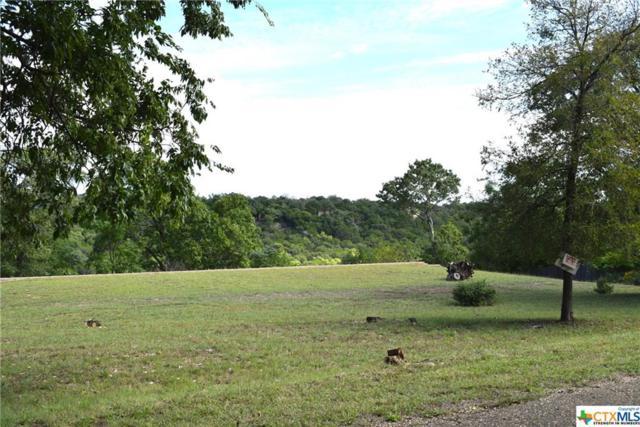 6680 Ivy Ridge, Belton, TX 76513 (MLS #361313) :: Vista Real Estate