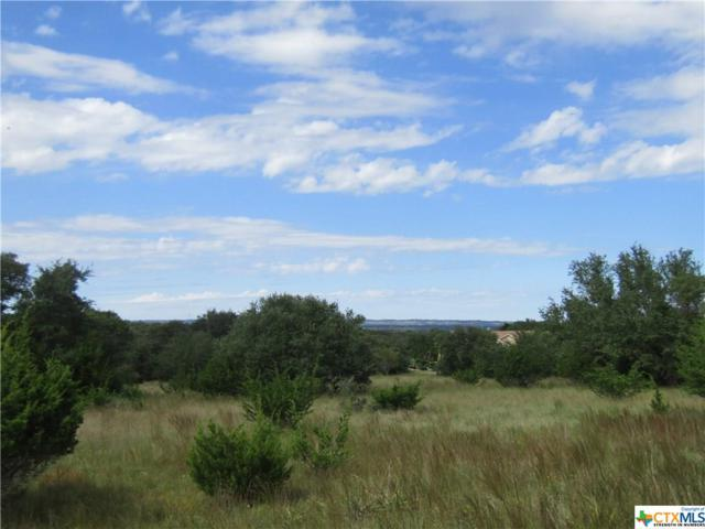 TBD Solomon Adams, Blanco, TX 78606 (MLS #361386) :: Magnolia Realty
