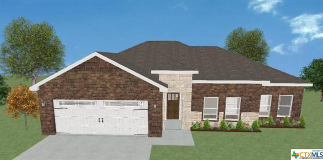 315 Blue Jay Loop, Victoria, TX 77905 (MLS #361418) :: Kopecky Group at RE/MAX Land & Homes