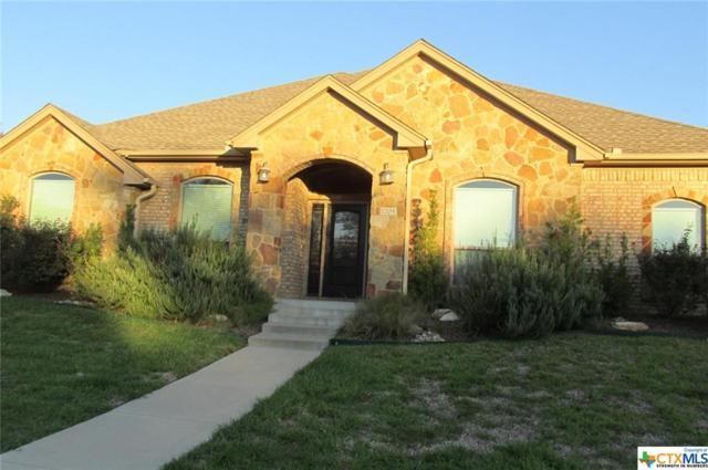 1705 Remuda, Belton, TX 76513 (MLS #361423) :: Vista Real Estate
