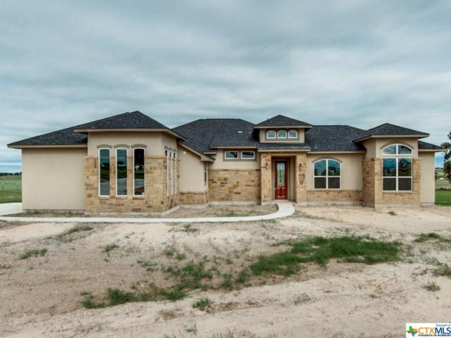 336 Warbler Drive, Spring Branch, TX 78070 (#361568) :: Realty Executives - Town & Country