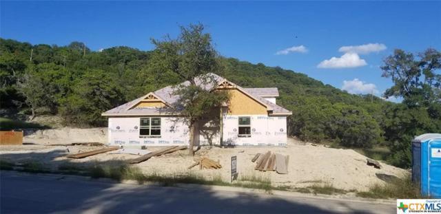3532 Shoreline Dr., Harker Heights, TX 76548 (MLS #361598) :: Magnolia Realty