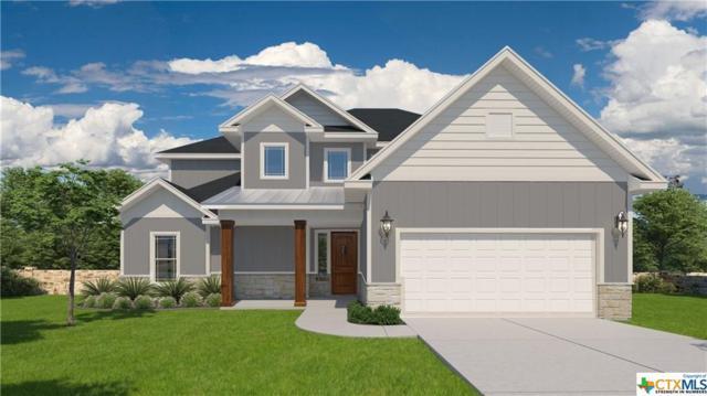 216 Ancient Oak Way, San Marcos, TX 78666 (MLS #361606) :: Vista Real Estate
