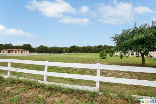 214 Bluebonnet, La Vernia, TX 78121 (MLS #361684) :: Magnolia Realty