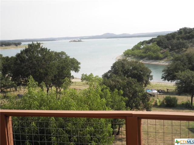 333 Spanish Oak Esplanade, Canyon Lake, TX 78133 (MLS #361686) :: Erin Caraway Group