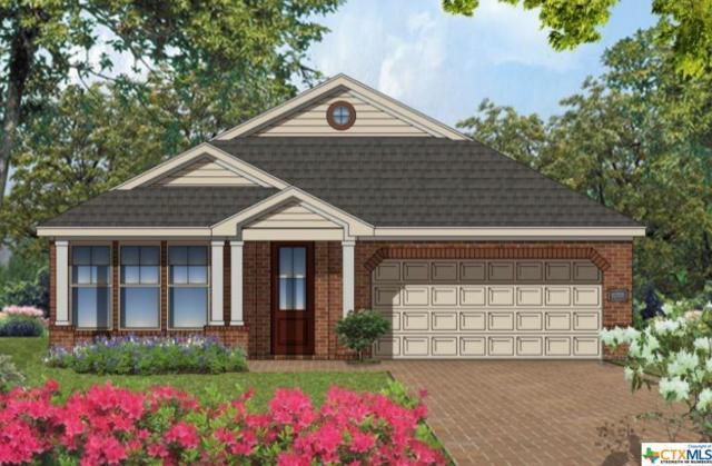 3702 Flatrock Mountain Drive, Killeen, TX 76549 (MLS #361691) :: Vista Real Estate