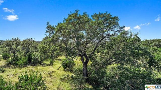 759 Trail Rock Drive, Johnson City, TX 78636 (MLS #361715) :: Kopecky Group at RE/MAX Land & Homes