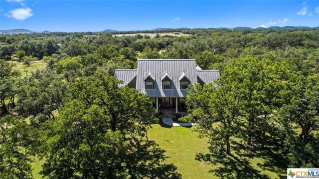 428 Mesquite Street, Johnson City, TX 78636 (MLS #361726) :: Kopecky Group at RE/MAX Land & Homes