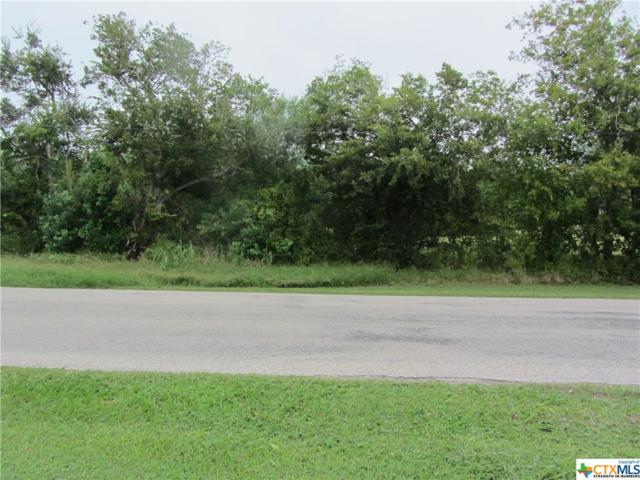 0000 W Ward Street, Goliad, TX 77963 (MLS #361742) :: RE/MAX Land & Homes