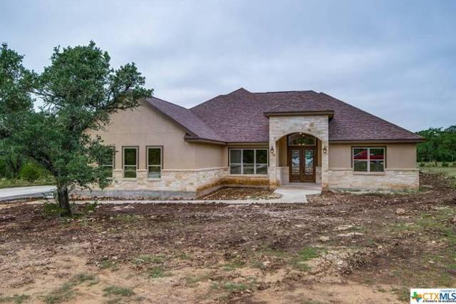 2314 Cascada Parkway, Spring Branch, TX 78070 (MLS #361776) :: The Suzanne Kuntz Real Estate Team
