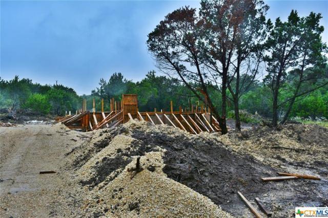 673 Deer Run Pass, Canyon Lake, TX 78133 (MLS #361784) :: Vista Real Estate