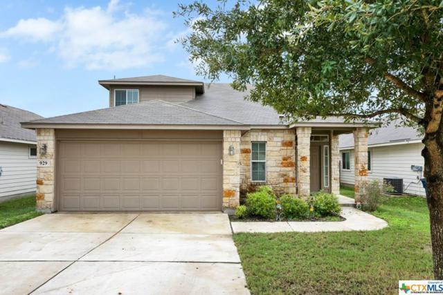 929 Lauren, New Braunfels, TX 78130 (MLS #361793) :: The Suzanne Kuntz Real Estate Team