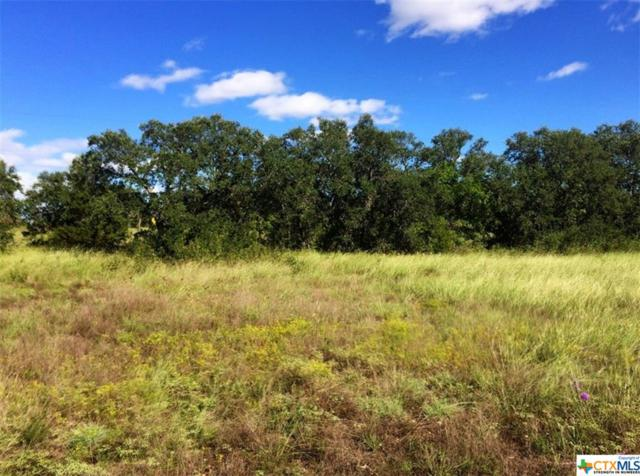 85 County Road 219, Florence, TX 76527 (MLS #361819) :: Vista Real Estate
