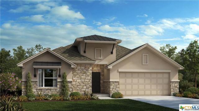 1165 Nutmeg Trail, New Braunfels, TX 78132 (MLS #361838) :: Vista Real Estate