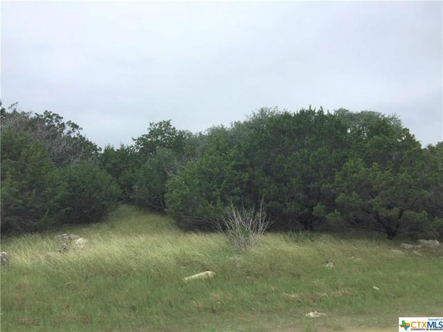 2238 Western Skies, Spring Branch, TX 78070 (MLS #361847) :: Vista Real Estate