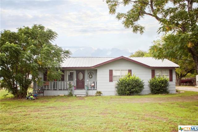 100 W Fm 487, Jarrell, TX 76537 (MLS #361855) :: Magnolia Realty