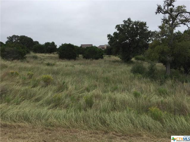 523 Rio Ridge Parkway, Spring Branch, TX 78070 (MLS #361970) :: Erin Caraway Group