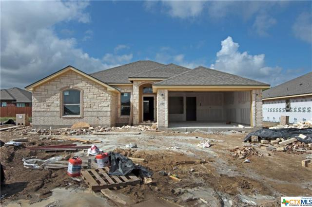 1818 Broken Shoe Trail, Temple, TX 76502 (MLS #361986) :: Magnolia Realty