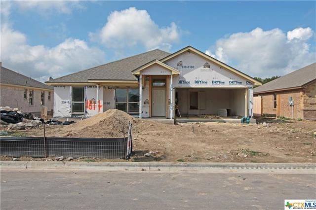 1706 Broken Shoe Trail, Temple, TX 76502 (MLS #361987) :: Magnolia Realty