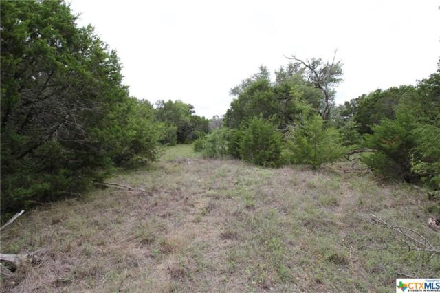 TBD Cowan Road, Moody, TX 76557 (MLS #362076) :: Kopecky Group at RE/MAX Land & Homes