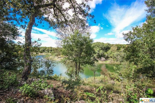 13028 Canyon, Belton, TX 76513 (MLS #362098) :: Magnolia Realty