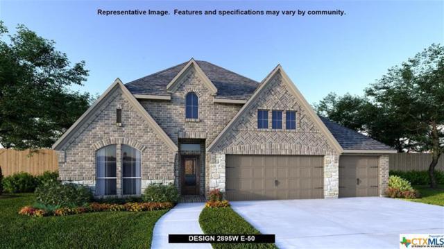 8823 Haystack Road, San Antonio, TX 78254 (MLS #362363) :: The Suzanne Kuntz Real Estate Team