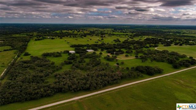 1257 Post Oak Road, Goliad, TX 77963 (MLS #362406) :: Kopecky Group at RE/MAX Land & Homes