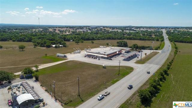 214 Gerald Drive, Blanco, TX 78606 (MLS #362426) :: The Zaplac Group