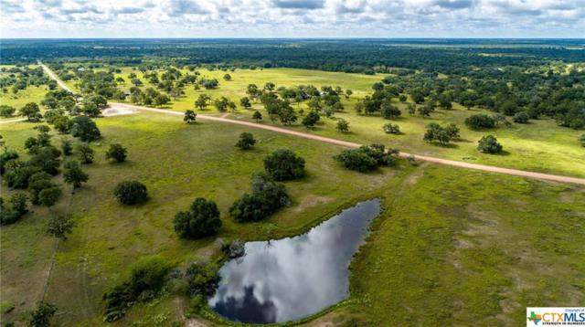 3445 Cattle Guard, Yoakum, TX 77995 (MLS #362572) :: RE/MAX Land & Homes