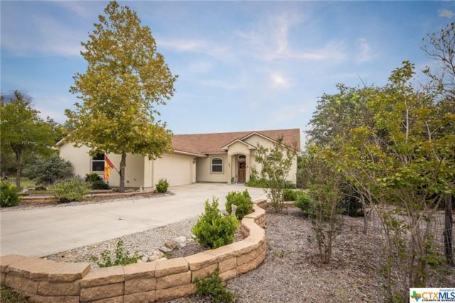 431 Cielo, Canyon Lake, TX 78133 (MLS #362649) :: Erin Caraway Group