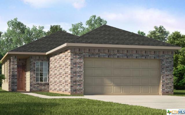 162 Buttercup Bend, New Braunfels, TX 78130 (MLS #362707) :: The Suzanne Kuntz Real Estate Team