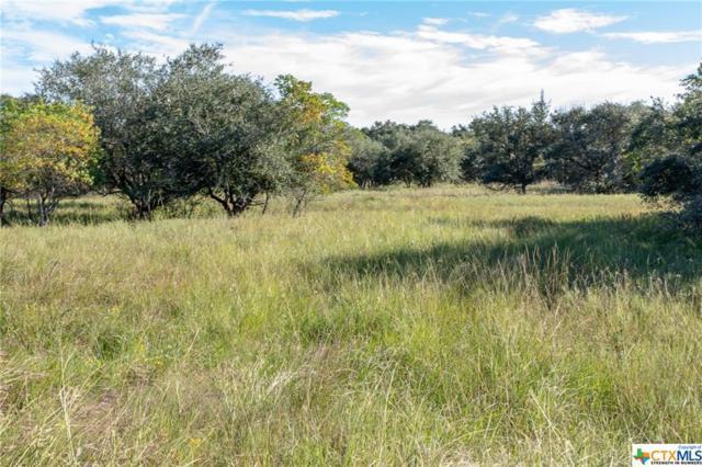 338 Private Road 4622 Road, Francitas, TX 77979 (MLS #362857) :: RE/MAX Land & Homes