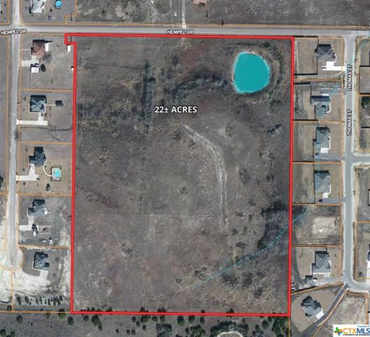 TBD Hempel, OTHER, TX 76522 (MLS #362931) :: RE/MAX Land & Homes