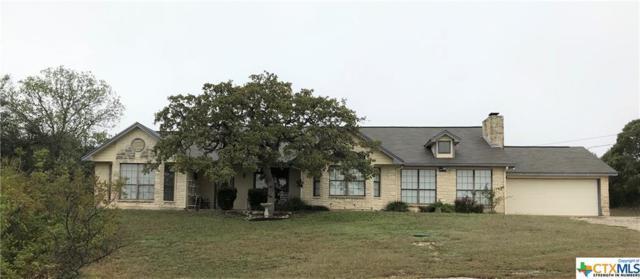 840 Longhorn Trail, Belton, TX 76513 (MLS #363176) :: Magnolia Realty