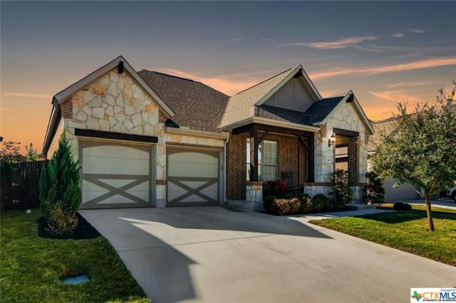 222 Crooked, Buda, TX 78610 (MLS #363229) :: Magnolia Realty