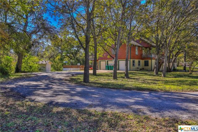 110 Elm Drive, Belton, TX 76513 (MLS #363241) :: Magnolia Realty