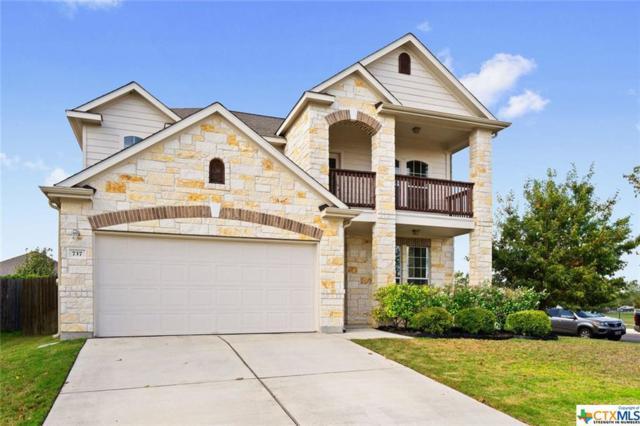 737 Harwood Drive, San Marcos, TX 78666 (MLS #363282) :: Magnolia Realty