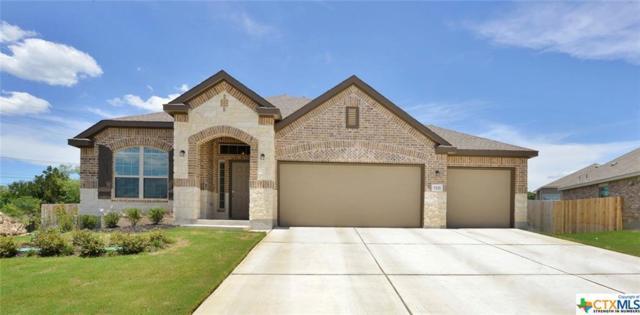 5611 Haven, New Braunfels, TX 78132 (MLS #363323) :: The Suzanne Kuntz Real Estate Team