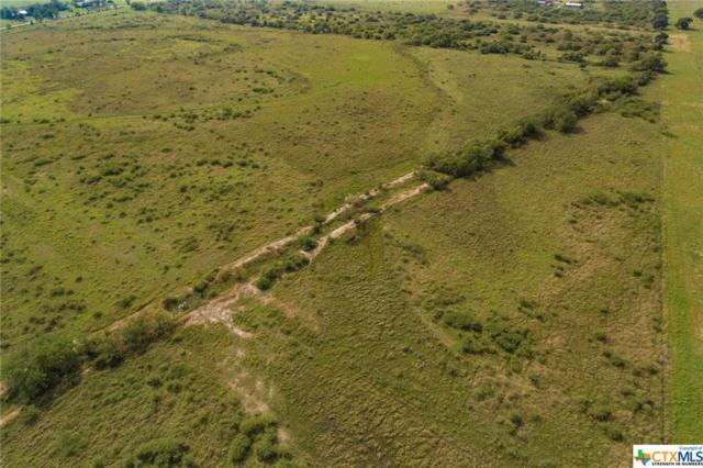 000 County Road 462, Lolita, TX 77971 (MLS #363406) :: The Suzanne Kuntz Real Estate Team