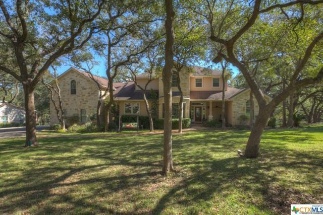540 Winding View, New Braunfels, TX 78132 (MLS #363563) :: Magnolia Realty