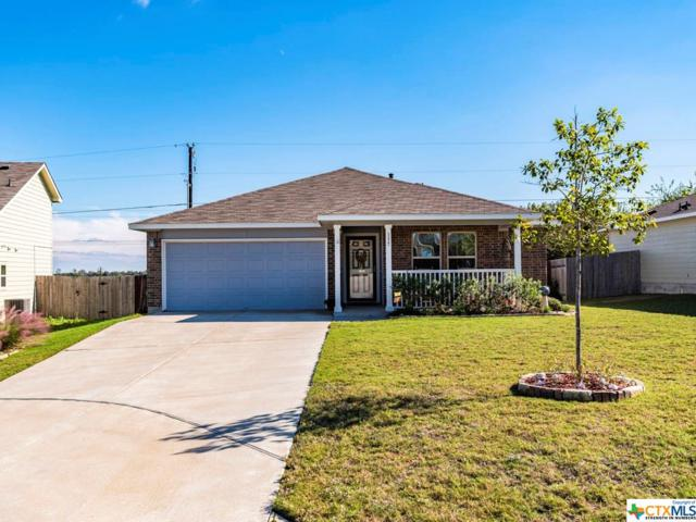 137 Westminster, Kyle, TX 78640 (MLS #363636) :: RE/MAX Land & Homes