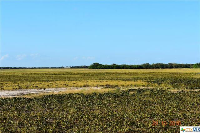 TBD W County Road 2140, Kingsville, TX 78363 (MLS #363645) :: The i35 Group