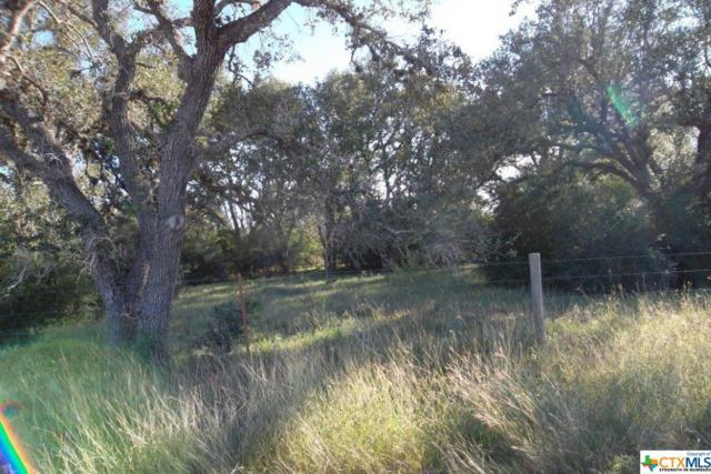 871 Sapenter Road, Goliad, TX 77963 (MLS #363674) :: Kopecky Group at RE/MAX Land & Homes