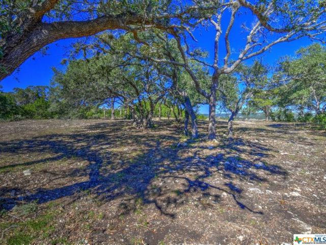 2050 San Jose Way, Canyon Lake, TX 78133 (MLS #363746) :: Berkshire Hathaway HomeServices Don Johnson, REALTORS®